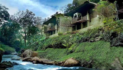 Ogek Home Stay Bali Indonesia Asia 20 rainforest hotels in bali tucked away in lush paradise