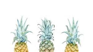 Hawaiian Doormat Pineapple Desktop Wallpaper Oh So Lovely Blog Pinteres