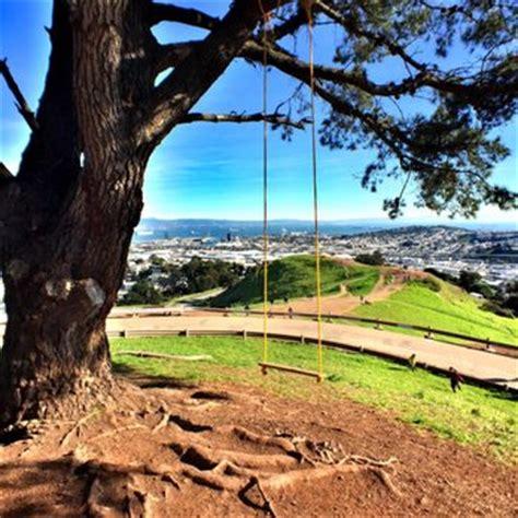 tree swing san francisco bernal heights park 649 photos 253 reviews dog parks