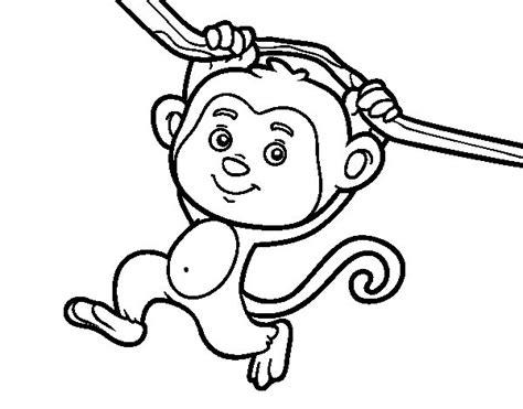 dibujos para colorear de monos monkey hanging from a branch coloring page coloringcrew com