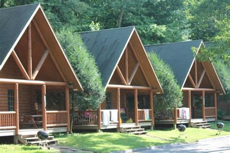 log cabins rentals picture of cedar lodge settlement