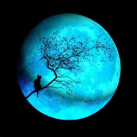 blue moon beautiful blue moons eyesofodysseus
