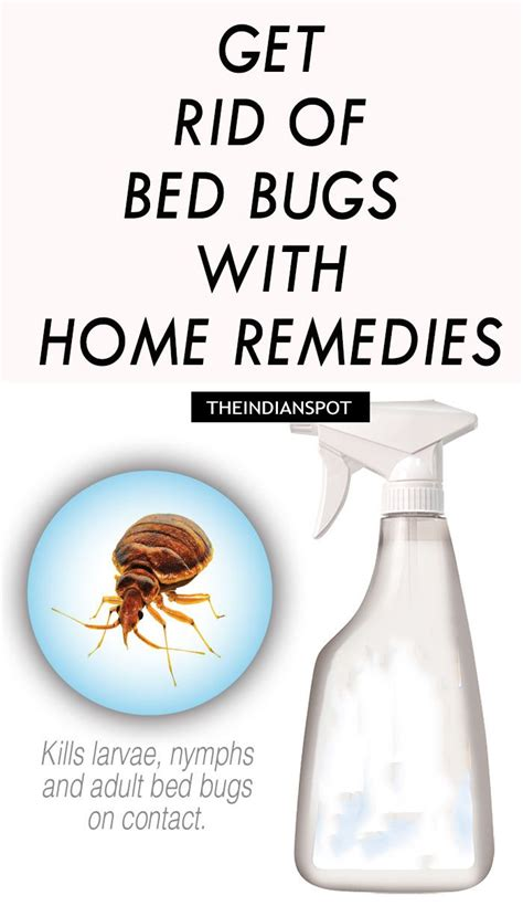 Indian Home Remedies To Get Rid Of Bed Bugs