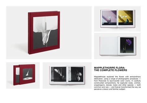 robert mapplethorpe the nymph 8857222446 mapplethorpe mania 10 corso como official website