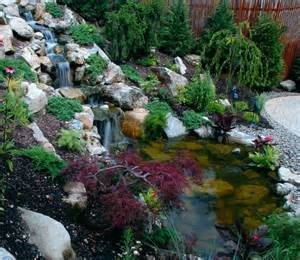 attracting wildlife in backyards traditional landscape