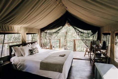 Original Safari Tent   Paperbark Camp