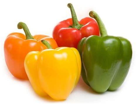 Paprika Kuning Sayur Sayuran Curah anisa wulandari