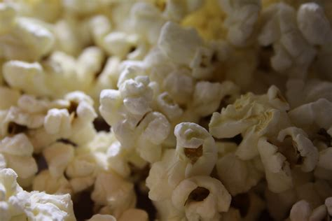popcorn removal orlando archives