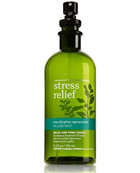 Detox For Stress Relief by The 25 Best Stress Reliever Ideas On Stress