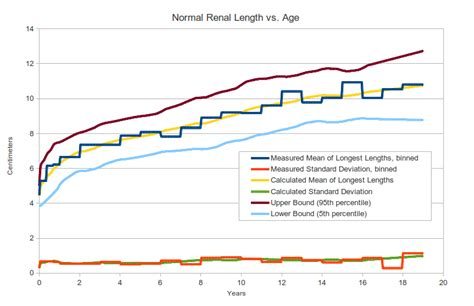 Normal Length by Pediatric Kidney Size Normal Range And Renal Length
