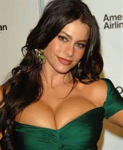 Vanity Van Meaning Sofia Vergara Plastic Surgery Before Amp After Celebrity