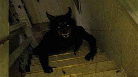 Loup Garou photo de loup garou al97 aieasyspain