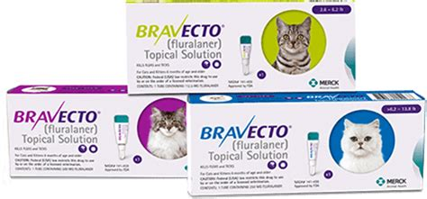 Bravecto Flea Pill For Cats - flea tick treatment for cats bravecto 174 fluralaner