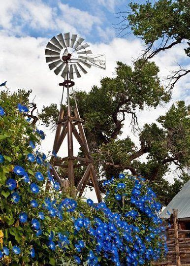 193 Best Images About 100 Day On Pinterest Activities Garden Flower Windmills