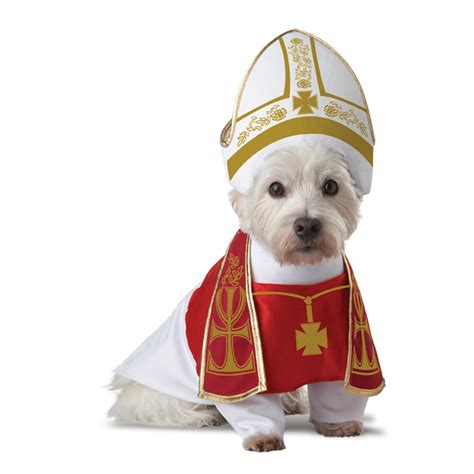 puppy costume holy hound costume baxterboo