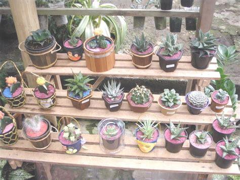 Jual Planter Bag Surabaya erik kaktus green souvenir merchandise green souvenir