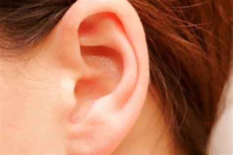 imagenes animadas orejas 191 auriculoterapia centro de yoga acuarius talca