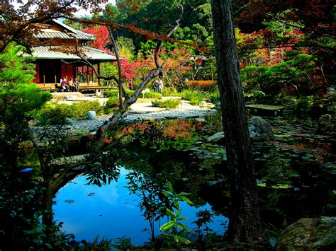 japanese garden pictures japanese gardens on pinterest gardens portland and bridges