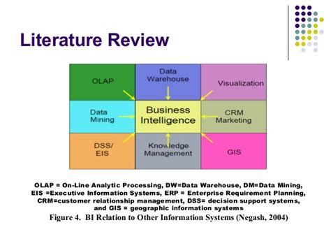 Procter 2004 Literature Review by 120 Business Intelligence Modeling For Increasing Company Value And