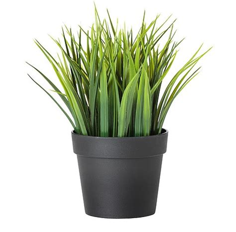 Plants And Pots Decorating With Faux Cat Grass I Cat