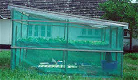 V Sock Untuk Sistem Hidroponik Dft viii rumah hidroponik tanaman hidroponik 2018