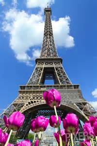 Eiffel tower with flowers wall mural