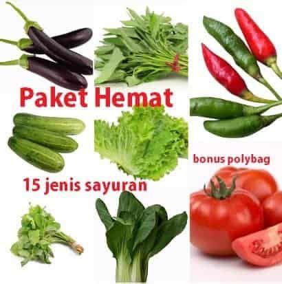 Paket Hemat Mpasi 15 500ml jual paket hemat 15 jenis benih sayuran bonus polybag bibit