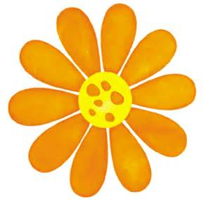 meissner blog flower petal