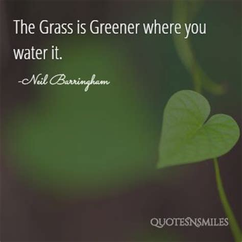the grass is greener till you get to the other side books images 10 awesome picture quotes to get you through the