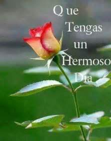 imagenes de rosas que digan buenos dias buenos dias frases del dia pinterest buen d 237 a