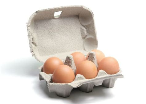 How To Make Egg Trays From Recycled Paper - how to make egg trays from recycled paper 28 images