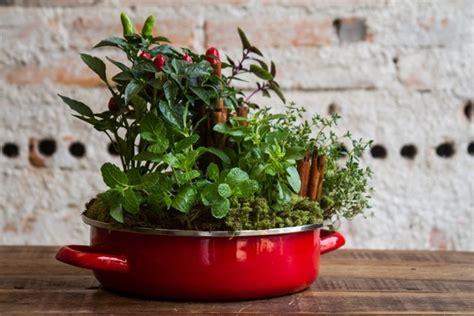 creative indoor herb garden grow herbs and vegetables in the kitchen