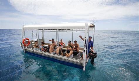 glass bottom boat tours australia great barrier reef and ultimate kuranda 2 day cairns