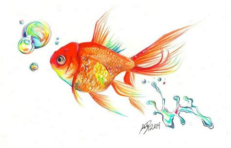 rainbow goldfish print by lucky978 on deviantart
