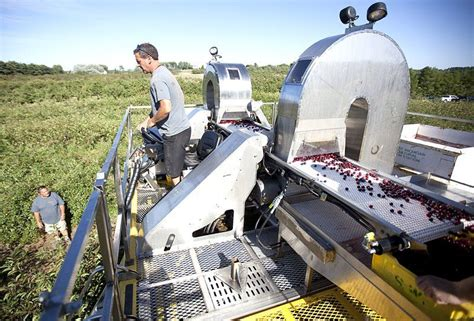 dawson v cherry tree machine future of farming the row cherry harvester at station business record eagle