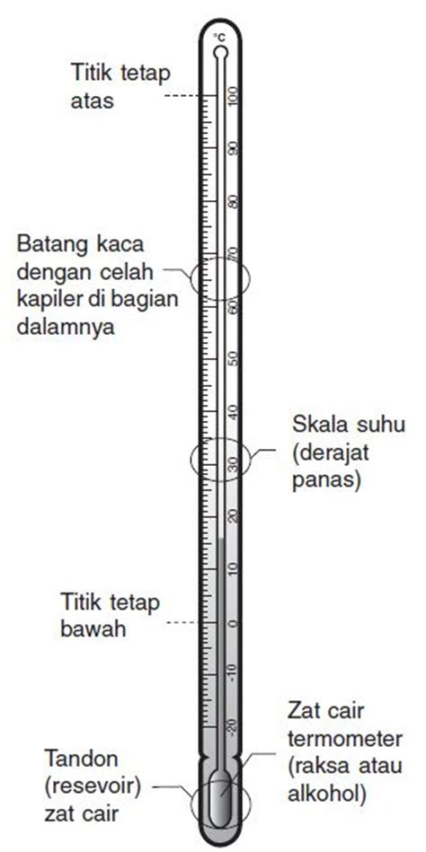 Termometer Pengukur Panas Badan pengertian suhu dan kalor serta alat pengukur suhu