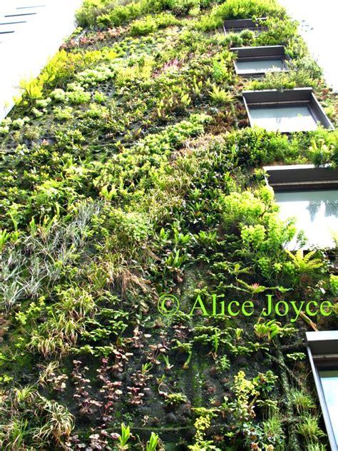 verdantly vertical blanc garden s