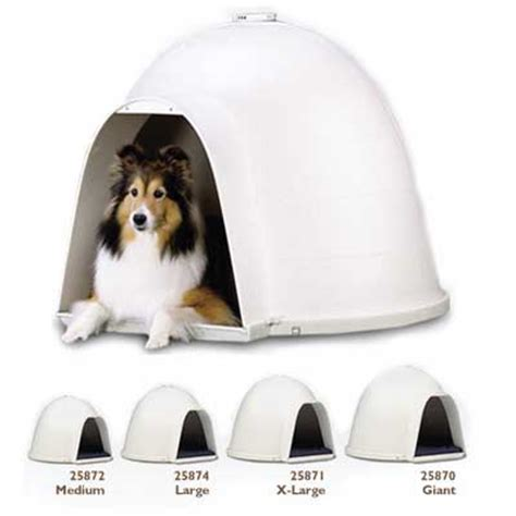 large dog igloo house igloo dog houses for large dogs bag the web