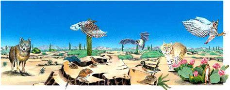 imagenes de animales y plantas del desierto los ecosistemas