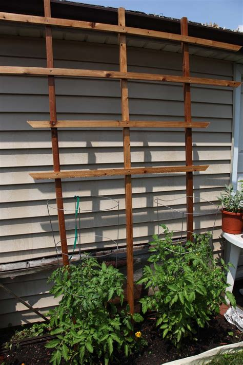 wooden trellis wooden trellis diy plans diy free top woodworking