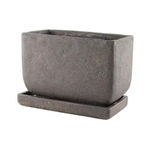 syndicate 5 in x 8 in cement planter with tray 7913 04