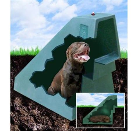 winter proof dog house miller pet products has come up with the idea to help keep dogs cool in the summer and