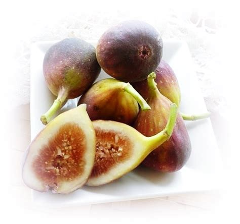 7 Aphrodisiacs For by Aphrodisiacs Quiz For S Day And Beyond Sudden