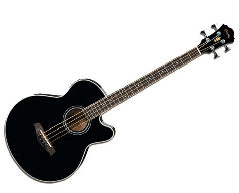 acoustic bass i want to get my boyfriend an acoustic bass for