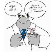 Gentil Le Chat  Tu Connais La Derni&232re
