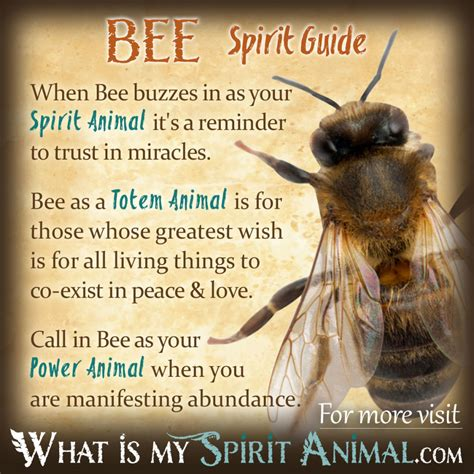symbolizes meaning bee symbolism meaning spirit totem power animal