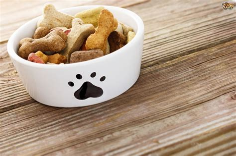 puppies food food labelling decoded pets4homes