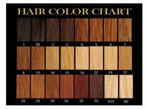 hair color number chart power hair learn which number is your hair colour