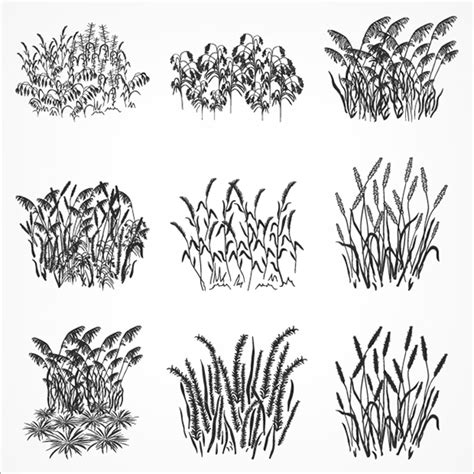 templates brushes photoshop 240 photoshop grass brushes free vector eps abr ai