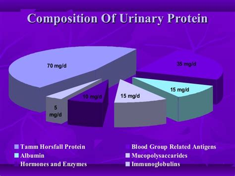 protein 0 3 in urine urine examination how to approach ppt1